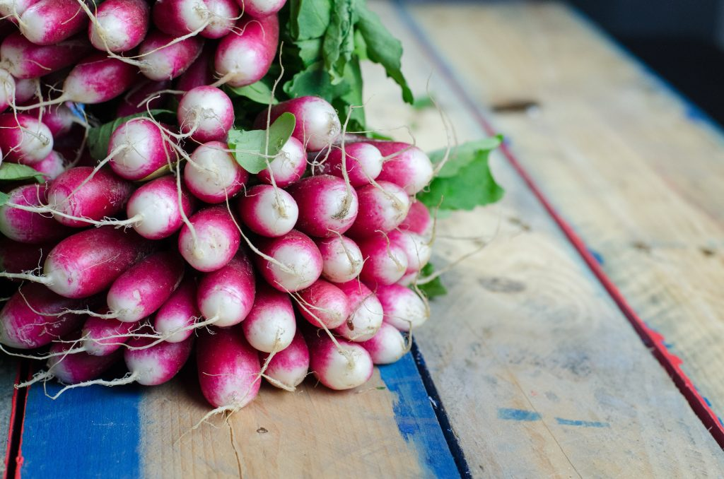 Radishes - Edibles Anyone Can Grow